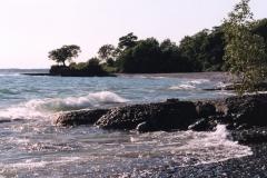 Pt Petre Beach #615