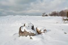 Pt Petre Rocks Tree Winter #3318