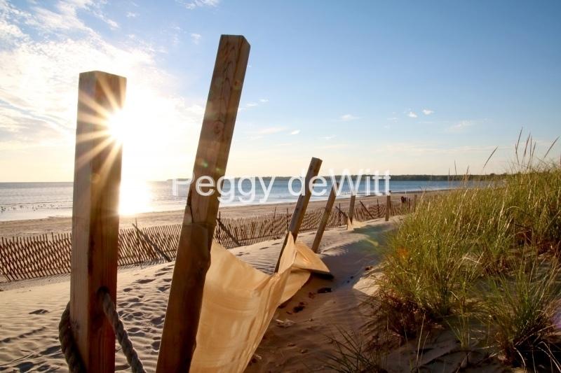 Sandbanks Fence Sun #3608