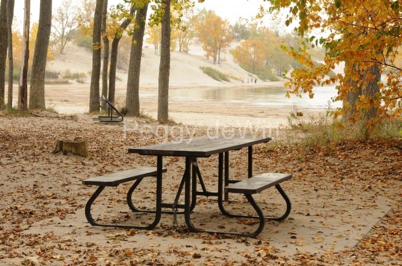 Sandbanks Picnic Table Fall #2289