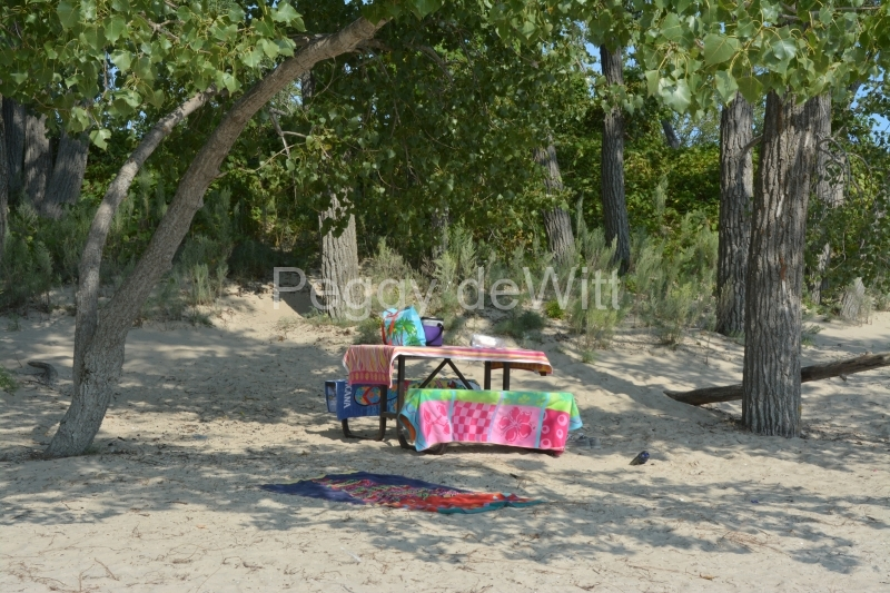 Sandbanks Table Towels #3381