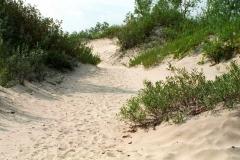 Sandbanks Dunes Lane #198
