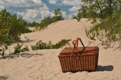 Sandbanks Dunes Picnic Basket #3334