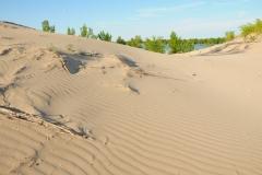 Sandbanks Dunes Sand #2661