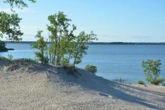 Sandbanks Dunes West Lake Bush #3336