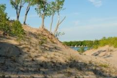 Sandbanks Dunes (v) #2662