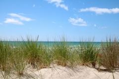 Sandbanks Grass Sand Sky #3610