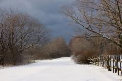 Sandbanks Lane Winter #1026