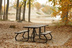 Sandbanks Picnic Table Fall #2289