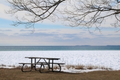 Sandbanks Picnic Table Winter #3367