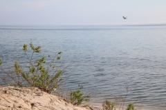 Sandbanks Plain Water #3614