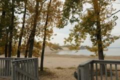 Sandbanks Railing Fall #2290