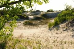 Sandbanks Sand #2672