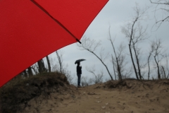 Sandbanks Spring Umbrella #2430