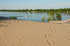 Sandbanks West Lake 4 #2678