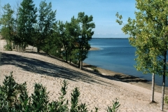 Sandbanks West Lake Dunes #575