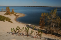 Sandbanks West Lake Dunes Fall #2299