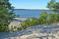 Sandbanks West Lake Dunes Greenery #3620