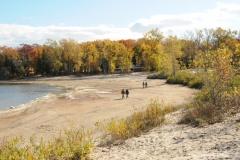 Sandbanks West Lake Fall 2 #2295
