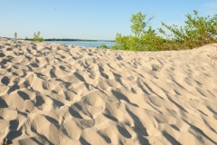 Sandbanks West Lake Sandy #2681