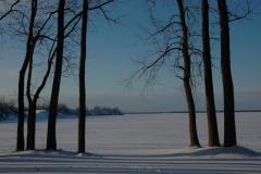 Sandbanks West Lake Winter #1583