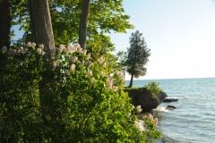 Sandbanks West Point Spring #2302