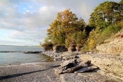 Sandbanks West Pt Fall Rocky #3623