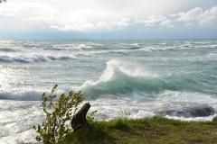 Sandbanks West Pt Splash Misty #3395