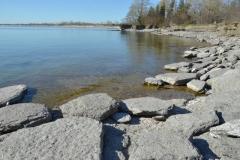 Sandbanks West Pt Spring #3396