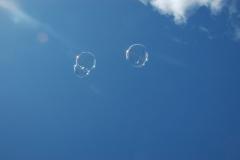 Bubbles #1088