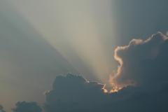 Sky Rays #1109