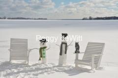 Snowmen Waupoos Owl #3410