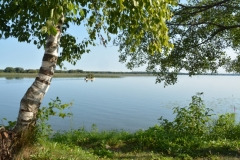 East Lake Birch Boat #3185