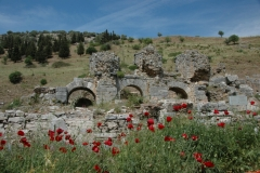 Turkey Kusadasi Ephesus (12) #1022