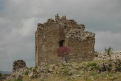 Turkey Pergamum (23) #1016