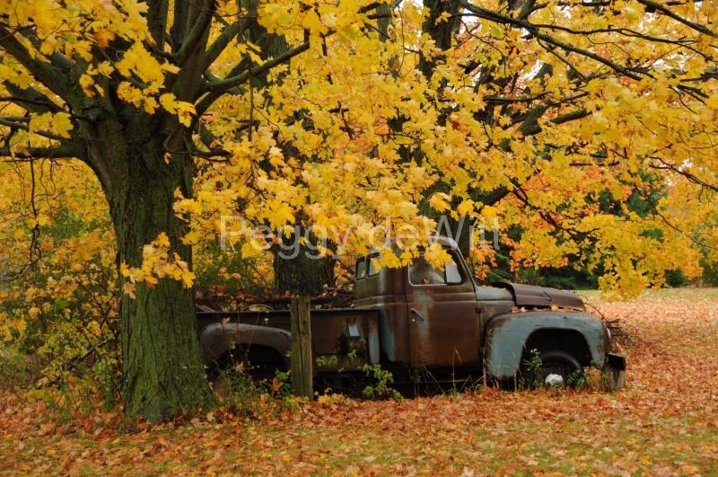 Truck Fall #3437