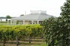 Vineyard Waupoos Winery #2716