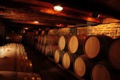 Wine Cellar #2732