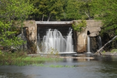 Waterfalls Queensbourgh Spring #2447