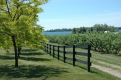 Waupoos Fence #1510