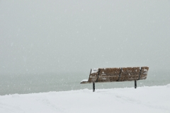 Wellington Beach Bench Winter #3462