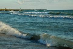 Wellington Beach Waves #969