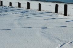 Wellington Beach Winter (v) #695
