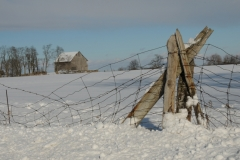 Barn Fence Winter #2767