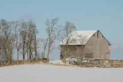 Barn Grey Winter #2768