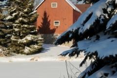 Barn West Lake Fir Trees Winter (v) #2117