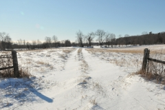 Field Milford Winter #3019