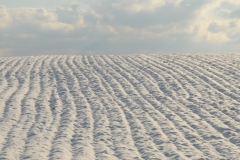 Field Ploughed Clouds Winter #3020
