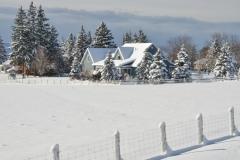House Fence Prinzen Winter #3270