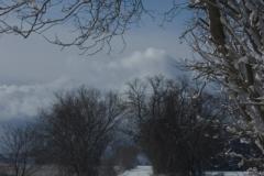 Lane Sandy Hook Winter (v) #2177